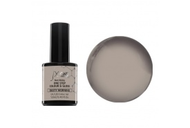FX-One Colour & Gloss Dusty Morning 12ml